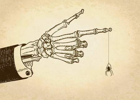 Skeleton human hand with spider. Vector illustration. 向量圖像