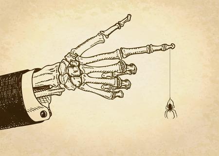 10 fingers: Skeleton human hand with spider. Vector illustration. Illustration