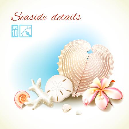oceanside: Souvenirs from tropical seas. Vector illustration, editable. Illustration