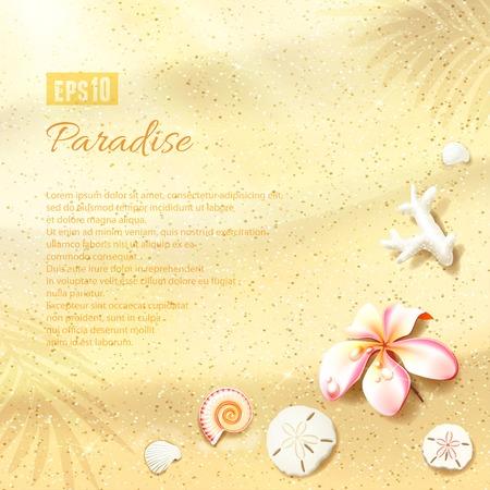 Sunny Dunes met Bloem, Zand Dollars en Seashell. Vector illustratie, eps10, bewerkbaar.