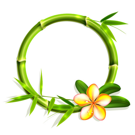 Bamboo frame with flower. Vector illustration, eps10. 일러스트