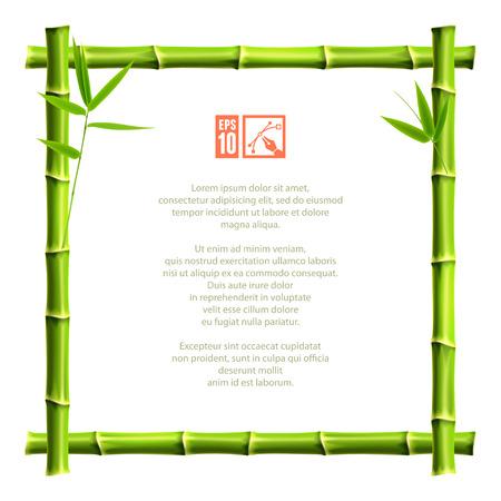 bambou: Cadre de bambou. Vector illustration, eps10. Illustration