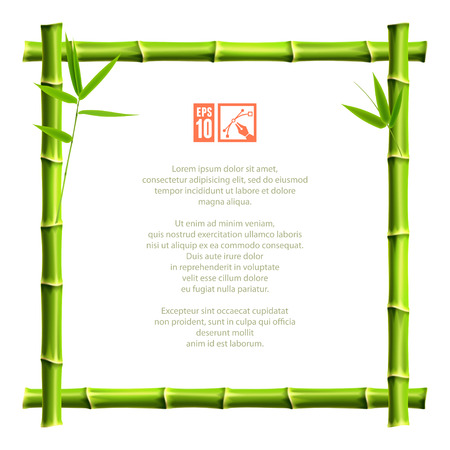 bamboo: Frame made of bamboo. Vector illustration, eps10. Illustration