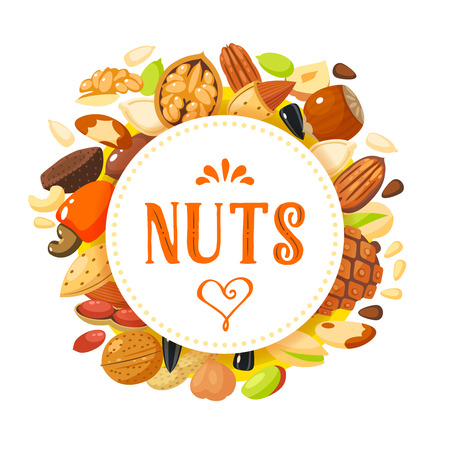 Round label with nuts: hazelnut, almond, pistachio, pecan, cashew, brazil nut, walnut, peanut, coconut, pumpkin seeds, sunflower seeds and pine nuts. Ilustracja