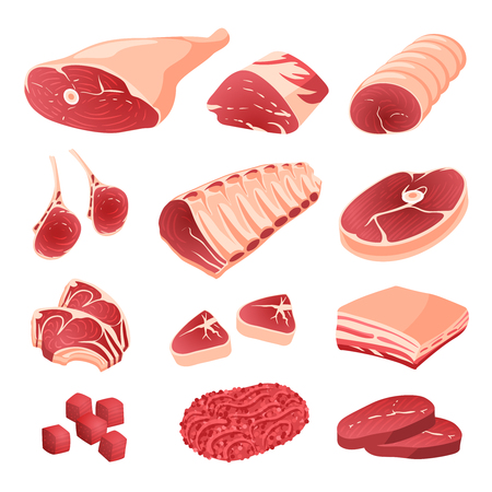Set of cartoon food: meat cuts assortment - beef, pork, lamb, round steak, boneless rump, whole leg, rib roast, loin and rib chops, rustic belly, ground meat, meat cubes for stew. Isolated on white.