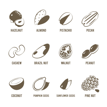 pistachio: Set of monochrome, lineart food icons: nuts - hazelnut, almond, pistachio, pecan, cashew, brazil nut, walnut, peanut, coconut, pumpkin seeds, sunflower seeds and pine nuts. Illustration