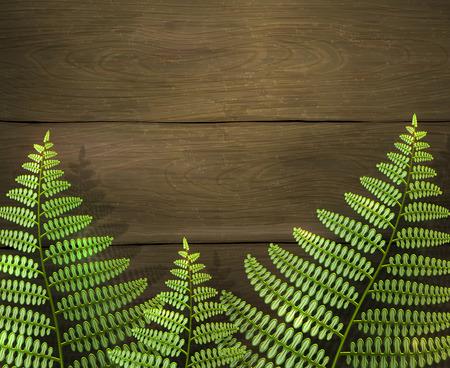 El fondo realista del verano con el helecho verde hojea en textura de madera. Aventura de camping al aire libre. Plantilla de diseño, ilustración vectorial.