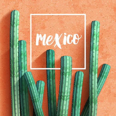 mexican background: Mexican realistic background with cacti. Vector illustration.