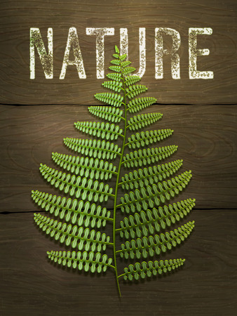 Green fern leaf on wooden background. Realistic vector illustration.