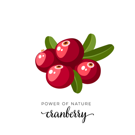 Red cranberry berry flat icon with inscription colorful vector illustration of eco food isolated on white.