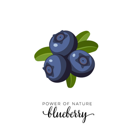 Blue blueberry berry flat icon with inscription colorful vector illustration of eco food isolated on white. Ilustracja