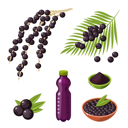 Set of colorful cartoon acai berry superfood products: branch with berries, bottle of juice, powder. Vector illustration flat icon, isolated on white.