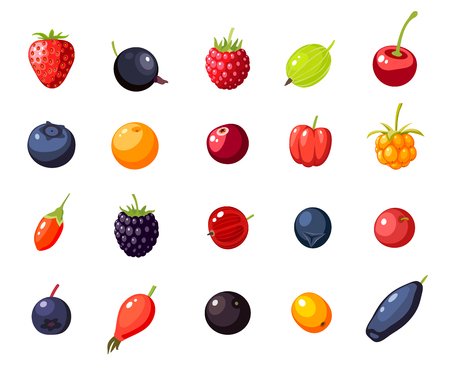Set single berries: cherry, rosehip, strawberry, acai, raspberry, juniper, cranberry, cloudberry, blueberry, goji, acerola, blackberry, currant, honeysuckle. Vector collection of flat icon, isolated.