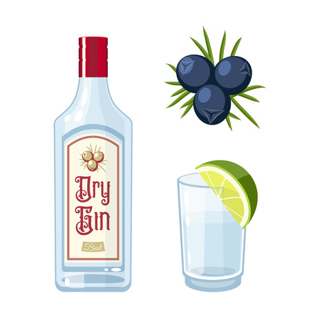Set of dry gin bottle, tonic cocktail with lime, juniper berries. Vector illustration flat icon isolated on white.