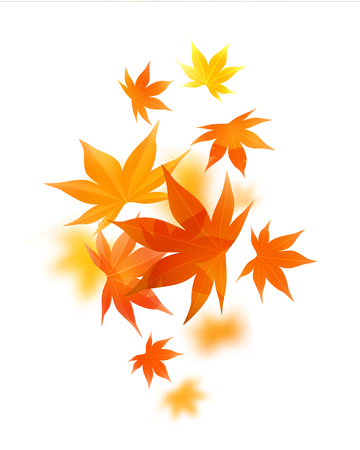 Realistic autumn maple leaves Vector illustration