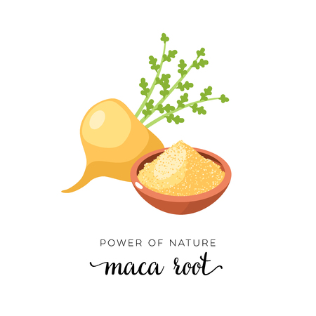Superfood fruit. Maca root. Vector illustration cartoon flat icon isolated on white.