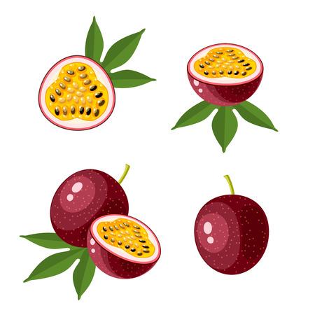 Superfood fruit. Set of passionfruit. Vector illustration cartoon flat icon isolated on white background.