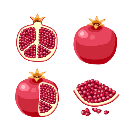 Superfood fruit. Set of pomegranate fruits. Vector illustration cartoon flat icon isolated on white background.