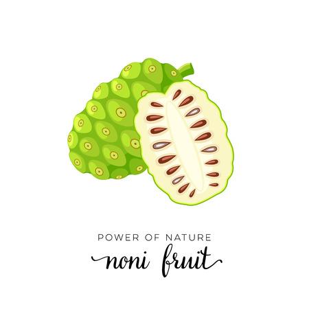 Superfood fruit. Noni fruit. Vector illustration cartoon flat icon isolated on white background.