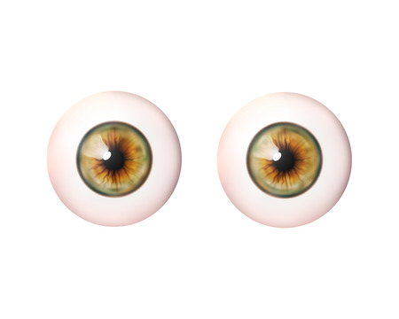 Couple realistic eyeball. Human eye. Vector illustration icon isolated on white.