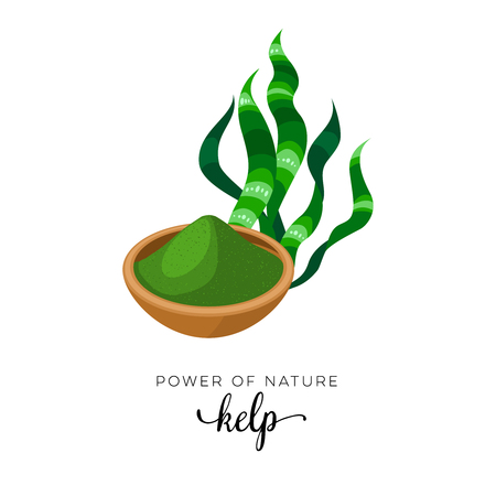 Superfood fruit. Kelp, grass and powder, seaweed. Vector illustration cartoon flat icon isolated on white.