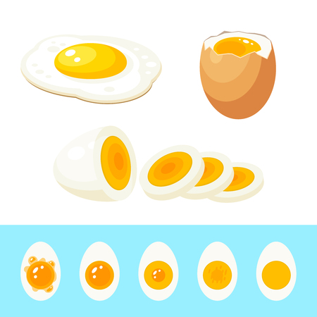 Set of cooked eggs: fried egg, hard boiled sliced egg, soft boiled egg in eggshell. Stages of readiness boiled egg. Vector illustration cartoon flat isolated icon collection.