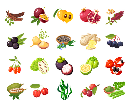 Set of fruit vector illustration.