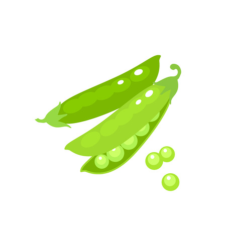 Vegetables. Green pea pod. Vector illustration cartoon flat icon isolated on white.