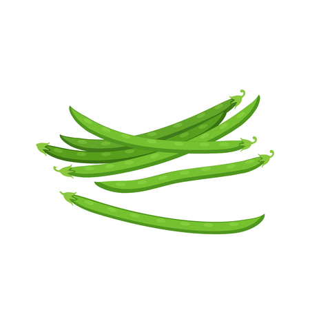 Vegetables. Pods of green bean. Vector illustration cartoon flat icon isolated on white.