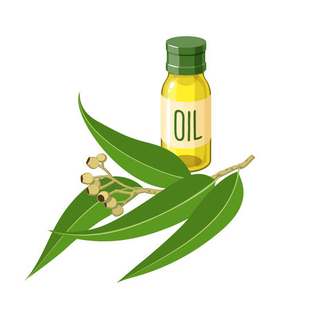 Eucalyptus branch with leaves and bottle of essential oil. Vector illustration cartoon flat icon isolated on white. Illustration