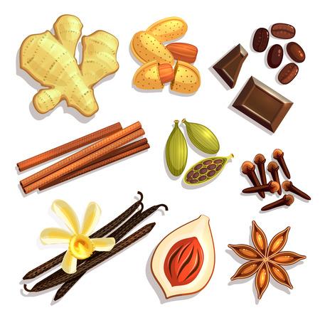 Set of Gourmet Coffee Spices. Cardamon, cinnamon, vanilla, ginger. Raster version. Stock Photo