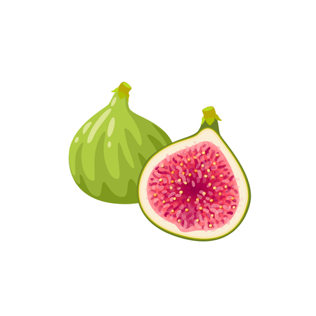 Summer tropical fruits for healthy lifestyle. Fig, green whole fruit and half. Vector illustration cartoon flat icon isolated on white. Stock Illustratie