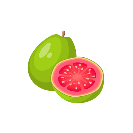 Summer tropical fruits for healthy lifestyle. Guava, whole fruit and half. Vector illustration cartoon flat icon isolated on white.