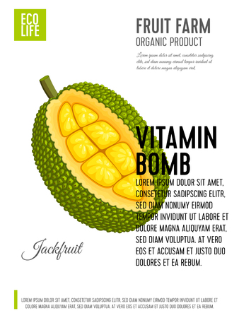 Packaging label. Concept design with inscription. Jackfruit. Vector flat poster template with text. Illustration