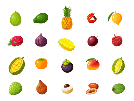 Tropical exotic fruits set. Vector illustration cartoon flat icon collection isolated on white.