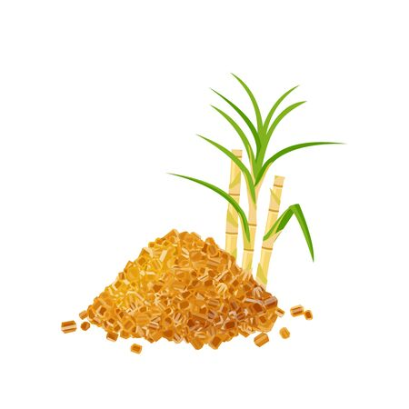 Heap of brown rock cane sugar and sugarcane stems with leaves. Vector illustration cartoon flat icon isolated on white background, template for packaging label design.