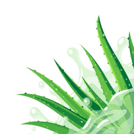 Aloe vera plant in the splash of water. Skin care product packaging label design template. Vector illustration flat cartoon icon in corner. Иллюстрация