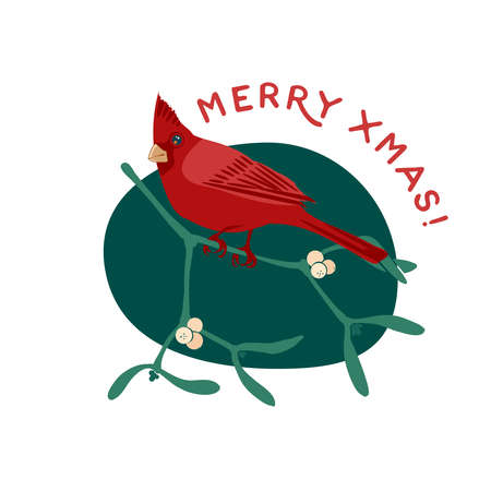 Cardinal bird on mistletoe branch with berries. Merry xmas greeting card. Vector illustration flat cartoon icon isolated on white background.
