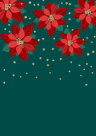 Poinsettia flowers on green background. Template for christmas greeting card, party invitation design. Vector illustration flat cartoon isolated icon.