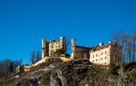 King Ludwig II and his castle