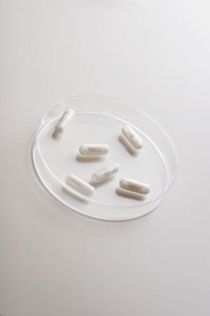malady: capsule