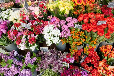 flower market: flowers in a flowershop