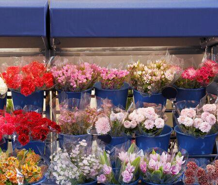 Flower shop landscape