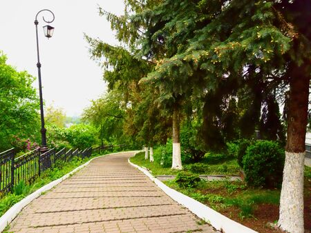 Winding footpaths in the city Park of Moscow. Green spruce, original lanterns and green bushes in the flower beds. Spring , cloudy. Urban landscape.