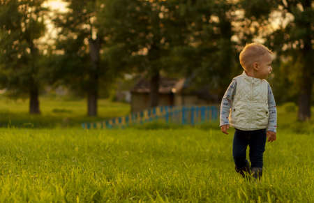 infancy, childhood, development, autumn mood, medicine and health concept - little blonde caucasian slavic boy 2 years old demonstrate emotions of joy and delight on green meadow in park at sunset. Stockfoto