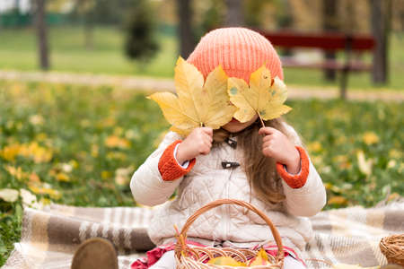 Childhood, family, infant, motherhood, autumn concept - Little cute preschool minor blonde girl in orange beret sits on plaid covers her face with yellow fallen maple leaves in cold weather in park Standard-Bild