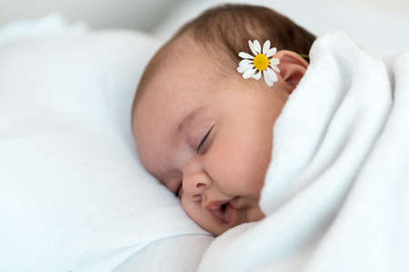 Newborn baby close-up. Side view of a chubby plump infant baby sleeping soundly on his back with chamomile behind the ear on a white background. Portrait of a lying little child on a beige background.