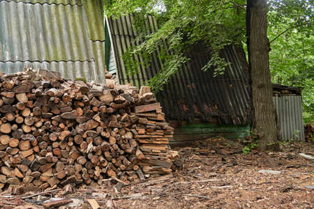 large pile of firewood near wooden house in avillage on outskirts of forest. rural abandoned building in forest. ecological fuel, lack of civilization, unity with nature, village life, poverty concept Фото со стока