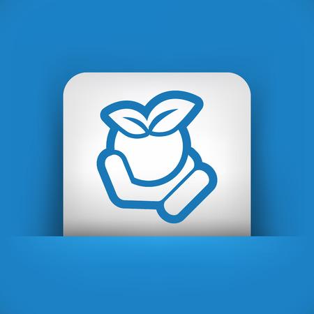 gravy: Tomato icon