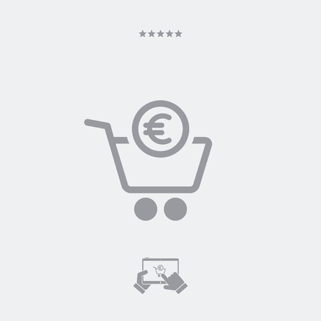 conclude: Complete shopping paying in Euro